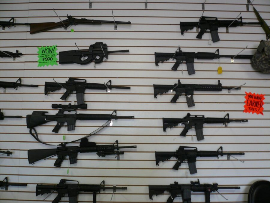 An Attempt to Clarify the Gun Debate