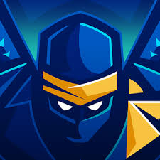 A Ninja in the Nite