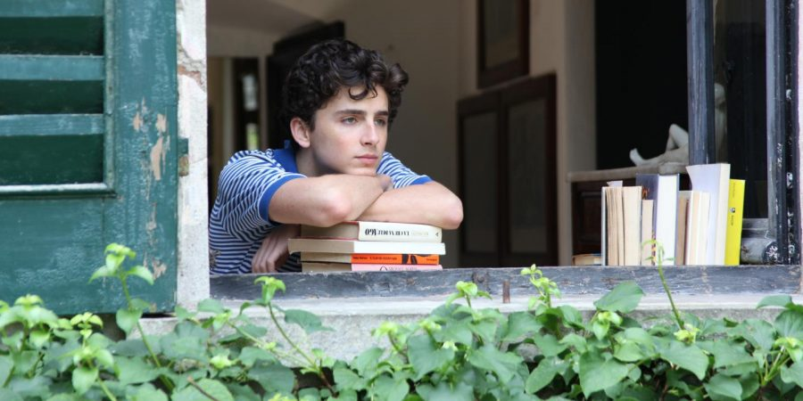 Calling Timothée Chalamet by His Name: A Superstar