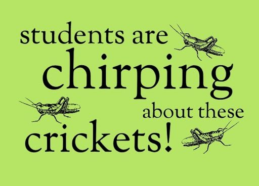 Gym Students Are Chirping about Crickets