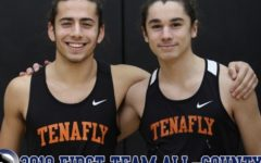 Two Tigers Take All-County