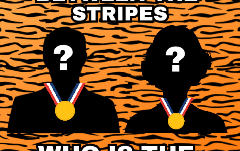 Reading Between The Stripes: The Mystery Behind the Olympics TIger