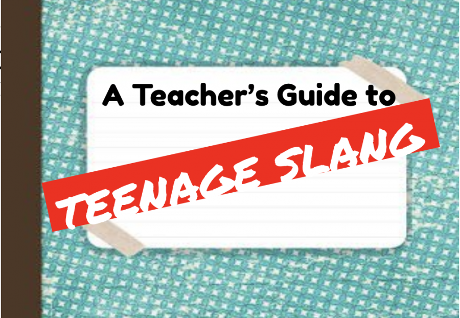 A+Teacher%27s+Guide+to+Teenage+Slang
