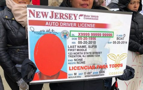 Should We Grant Driver's Licenses to All?