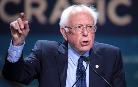 Sanders Wins Big in Nevada