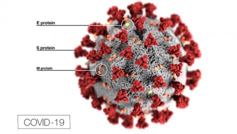 Using Semantic Visualization for Improved Coronavirus Treatment Searches