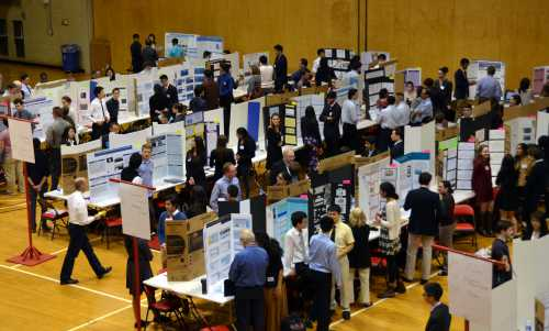 Science Research Students Win Awards at NJRSF
