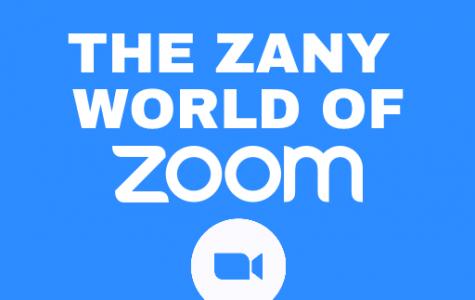 The Zany World of Zoom