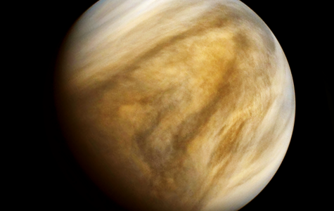 Signs of Life on Venus
