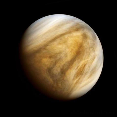 Signs of Life on Venus