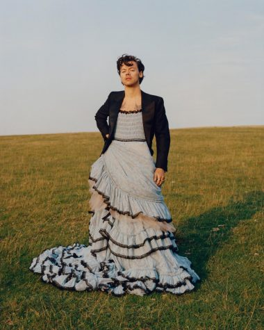 Harry Styles in a dress, as tweeted by Vogue Magazine